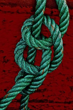 jjudge_Rope (Copy).jpg